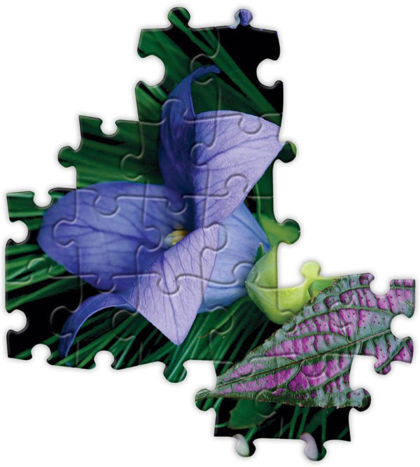 Summer Garden Sampler 1000 Piece Rectangular Puzzle