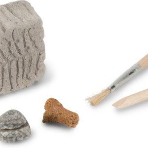 Fossil Dig in Beaker