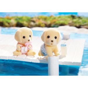 Yellow Labrador Twins