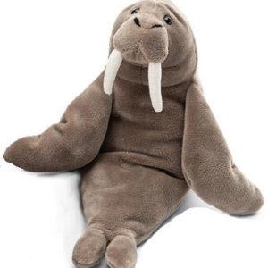 Wrinkles Walrus