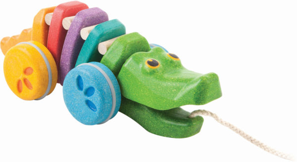 Rainbow Alligator - Rainbow