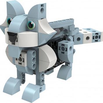 Kids First: Robot Safari - Introduction to Motorized Machines