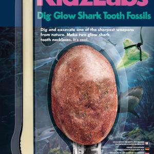 DIG GLOW SHARK TOOTH FOSSILS