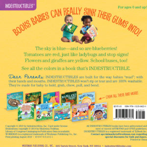 Indestructibles: Baby, See the Colors!: Chew Proof · Rip Proof · Nontoxic · 100% Washable (Book for Babies, Newborn Books, Safe to Chew)