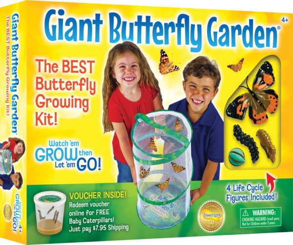 Giant Butterfly Garden with Life Cycle Figurines