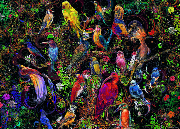 Birds Of Art